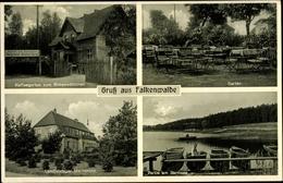 Cp Tanowo Falkenwalde Westpommern, Garten, Partie Am Barmsee, Mackensen - Pommern