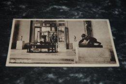 7519-    TERVUEREN, MUSEE DU CONGO BELGE, SALLE DE GEOLOGIE - Tervuren