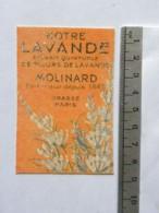 Carte Parfumée - Molinard - Notre Lavande - Perfume Cards