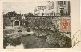 12534 - Siracusa - La Fontana Aretusa - Siracusa