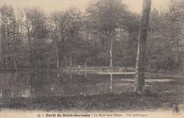 Cp , 78 , SAINT-GERMAIN-en-LAYE , La Forêt , La Mare Aux Canes , Vue Artistique - St. Germain En Laye
