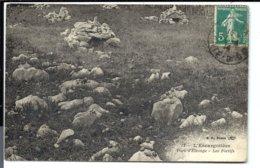 L'ESCARGOTIERE - élevage D' Escargots De Bourgogne (1913) - VENTE DIRECTE X - Sonstige Gemeinden