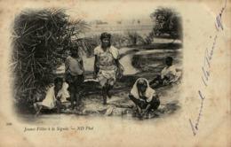 Algérie - Jeunes Filles à La Séguia - Women