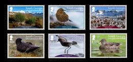 South Georgia 2019 Flora & Fauna Habitats Restored Birds 6v MNH - Géorgie Du Sud