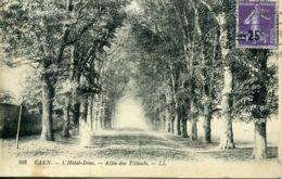 N°77236 -cpa Caen -l'hôtel Dieu -allée Des Tilleuls- - Caen