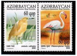 Azerbaijan 2010 . Birds (J/w Kazakhstan). Pair Of 2v X 60q. Michel # 832-33 - Azerbaiján