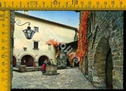 Gorizia Città Interno Del Castello - Gorizia