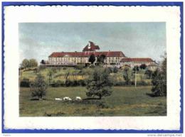 Carte Postale 01. Montoldre  Le Chateau De Gayette Trés Beau Plan - France