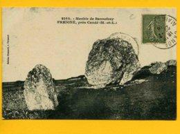 4909 -Menhir De Bonnefray - FREIGNE Près Candé - France