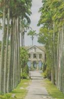 CARTOLINA - POSTCARD - BARBADOS - DC2 CODRINGTON COLLEGE ST. JOHN - Barbados