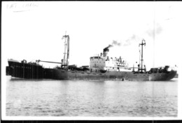 "Photo Récente Bateau "" Quiberon "" Delmas 1949 Arsenal De Brest "" Kwang Hing "" 1964 "" Molibera Trader "" 1971 - Reproducciones"