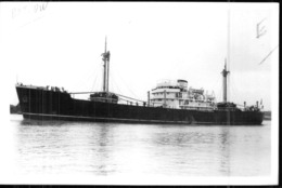 "Photo Récente Bateau "" Morbihan "" Delmas 1947 H Et W Glasgow 1964 "" Sea Sage "" 1977 ""Yi Chi "" Chine - Reproducciones"