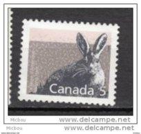 Canada, MNG, Lapin, Rabbit - Lapins