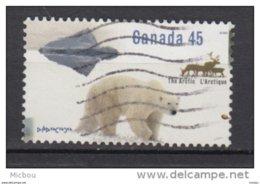 Canada, Ours Polaire, Polar Bear, Caribou - Ours