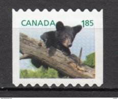 Canada, MNG, Ours, Bear - Ours