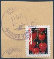 France - Vacances 2009 - Tomates YT A320 Obl. Cachet Rond Sur Fragment - Adhésifs (autocollants)