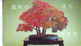 Télécarte  * Arbre Nain * BONSAI ( 320)  Dwarf Tree Japan Phonecard * Telefonkarte Baum - Fleurs