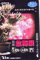 Carte  * Arbre Nain * BONSAI ( 325)  Dwarf Tree Japan Card * Karte Baum - Fleurs