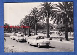 Photo Ancienne - Circuit De MAZAGAN ( Maroc ) - Course Auto - 7 Juin 1957 - Automobile PANHARD & DKW Auto Union - Automobiles