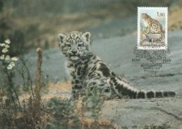 FINLAND 1989 Centenary Of Helsinki/Helsingfors Zoo: Maximum Card CANCELLED - Maximum Cards & Covers