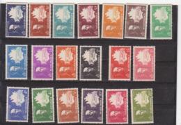 MARTINIQUE               N° YVERT   199/217   NEUF SANS CHARNIERES     ( Nsch  01/22 ) - Martinique (1886-1947)