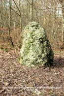Montargis (45)- Menhir Dit Pierre Du Gros Vilain (Tirage Limité) - Montargis