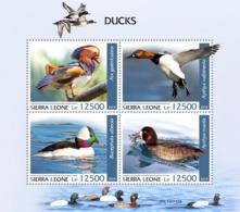 Sierra Leone  2019  Fauna  Ducks S201909 - Sierra Leone (1961-...)