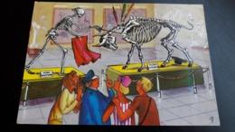 Illustration Spanishtyp 336 Homo Mactador Taurus Hispanicus - Illustrateurs & Photographes