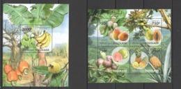 TG1005 2011 TOGO TOGOLAISE FLORA PLANTS NATURE FRUITS TOGO TOGOLAISE KB+BL MNH - Fruits