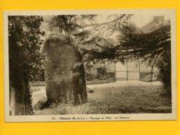 49CH10 - CHOLET - Jardin Du Mail - Le Menhir - Cholet