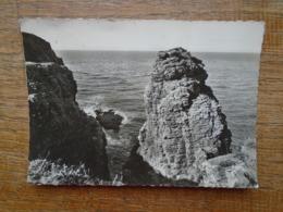 Cap Fréhel , La Grande Fauconnerie - Cap Frehel