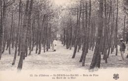 SAINT DENIS LES BAINS - ÎLE D'OLÉRON  - CHARENTE-MARITIME - (17) - CPA. - Ile D'Oléron