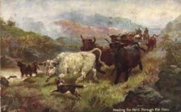 "Illustrateur ""IN THE SCOTTISH HIGHLANDS "" Heading The Hard Through Thr Pass   RV TUCK's Tresor Et Postes 140 - Peintures & Tableaux"