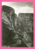 CPSM GM FRANCE 04  ~  ROUGON  ~  26  Les Gorges Du Verdon à Rougon, Le Point Sublime   ( C.A.D.S.E. Dentelée 50/60 ) - France