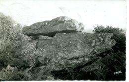 N°77243 -cpsm Viviers En Charnie -la Pierre Au Daible -dolmen- - Frankrijk