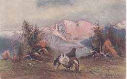 Hunting Jagd Caccia - Grumble Tetras Grousse Auerhahn Old Postcard - Caccia