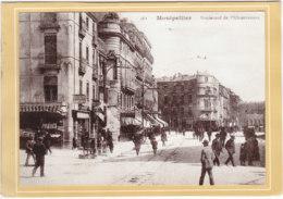 Montpellier (34) - Boulevard De L'observatoire - Carte De Meilleurs Voeux - Old Paper