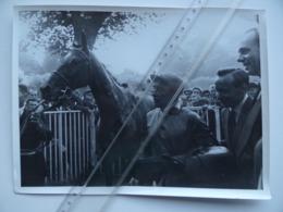 14 Hippodrome De DEAUVILLE Cheval ROSA-BONHEUR Vainqueur 1955 Du Grand-Prix Equitation PMU Hippisme - Lieux