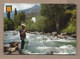 CPSM 66 - ROUSILLON - Pêche à La Truite Dans Les Pyrénées - TB PLAN Pêche Pêcheur - Pêche