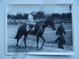 14 Hippodrome De DEAUVILLE Equitation PMU Hippisme Cheval - Lieux
