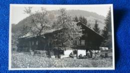 Frühling In Gstaad Switzerland - BE Berne
