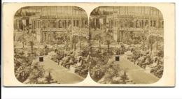 Photo Stéréoscopique - Crystal Palace. - Stereo-Photographie