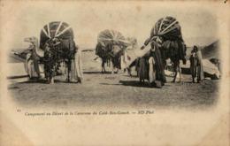 Algérie - Campement Au Désert De La Caravane Du Caïd Ben-Ganah - Algeria