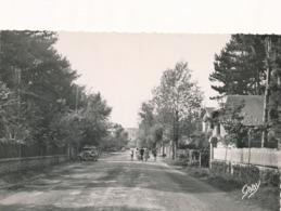 CPSM - France - (50) Manche - Jullouville - Avenue De La Chapelle - Autres Communes