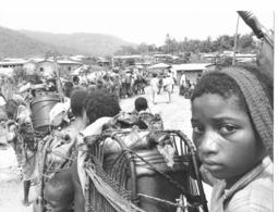 Photo Cameroun. Porteuses De Bidons D'huile De Palme . Photo Vivant Univers 2000 - Afrique