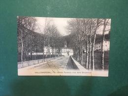 Cartolina Vallombrosa - R. Istituto Forestale Visto Dallo Stradellone - 1919 - Firenze