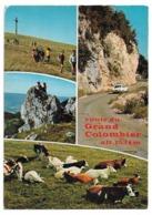 01 Images Du Grand Colombier Altitude 1534 M. (Jura - Route) - Non Classés