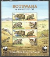 A1017 BOTSWANA WWF FAUNA WILD ANIMALS BLACK-FOOTED CAT 1KB MNH - W.W.F.