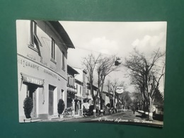 Cartolina S. Pietro Agliana - Via Roma - 1959 - Matera