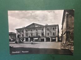 Cartolina Crevalcore - Municipio - 1956 - Bologna